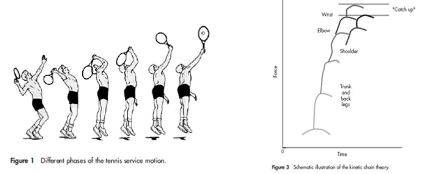 Different pahses of the tennis serve